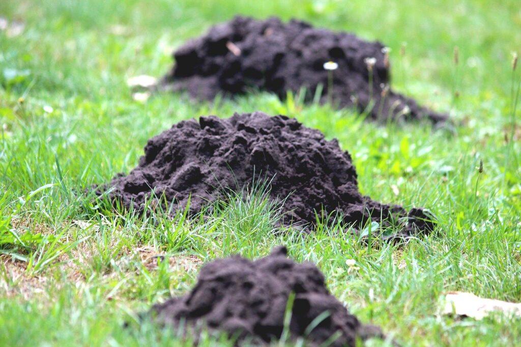 Three molehills