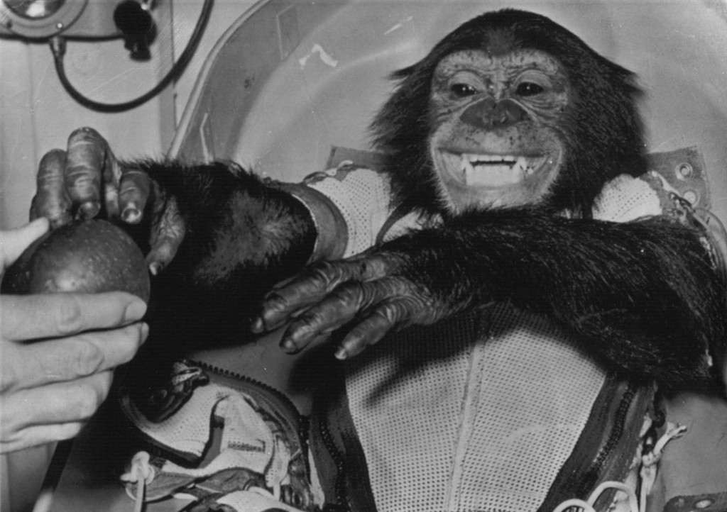 Ham the chimpanzee was one of many animals sent into space